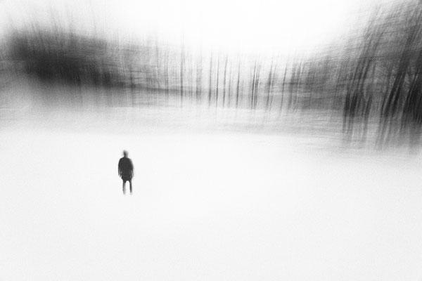 """William GUILMAIN, """"Traverser les forêts"""", Photographie numérique, Impression par piezographie (encres au charbon), 40x60 cm"""