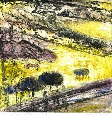 "Caroline ROCHETTE,gravure,"" mouvements en train"",48*17 cm,fevrier 2019"