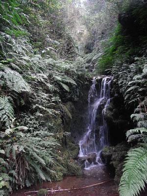 三原山3段の滝