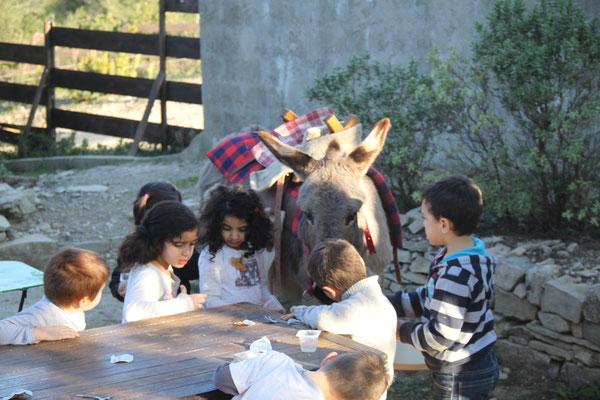 Que l'âne aime bien partager notre gouter...
