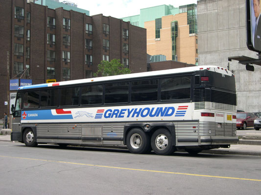 Greyhound Toronto
