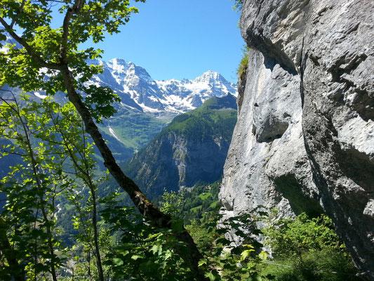 Klettersteig Mürren : Klettersteig mürren gimmelwald mountain report