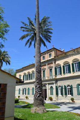 Botanischen Garten - Orto E Museo Botanico, Pisa