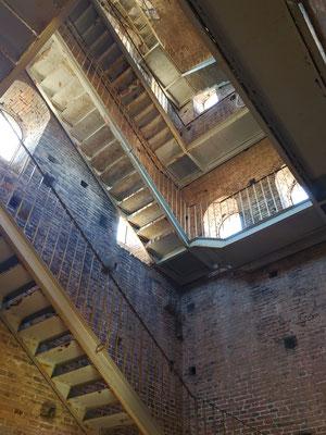 Treppenhaus - Torre Guinigi, Lucca