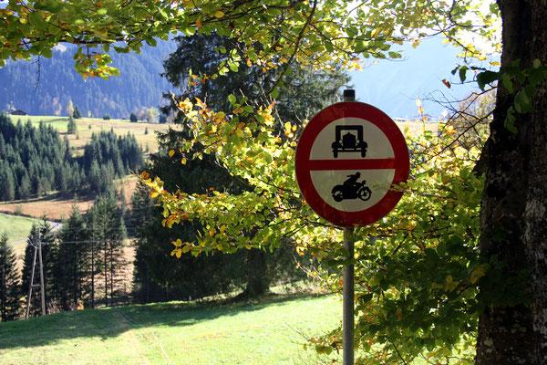 Herbstspaziergang – Copyright zuckerschnecke.at