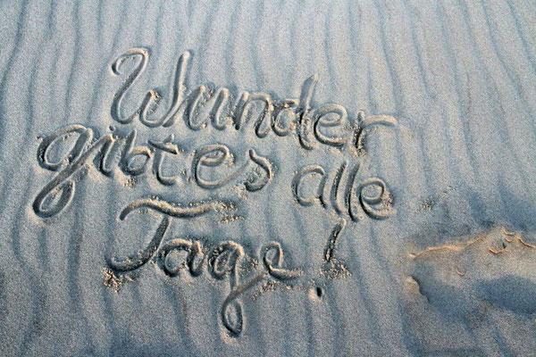 Sylter Meeresbrise  ° ©zuckerschnecke.at