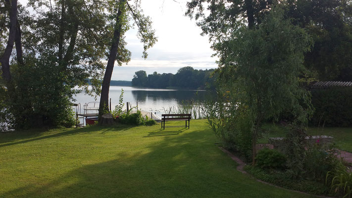 Morgenstimmung am Ufer