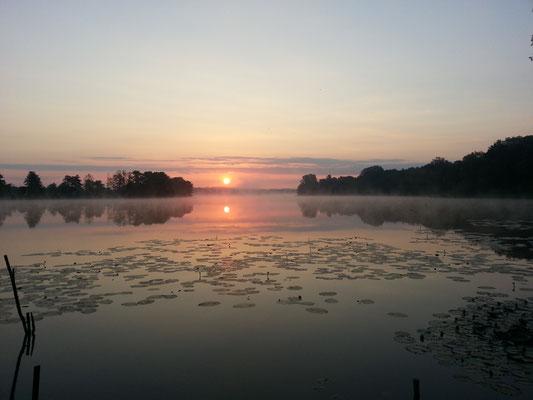 Sonnenaufgang im Juni um 5Uhr in der Früh