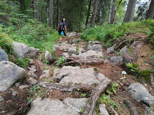 Der Abstieg ist so gut wie durchgängig recht verblockt und anstrengend zu gehen