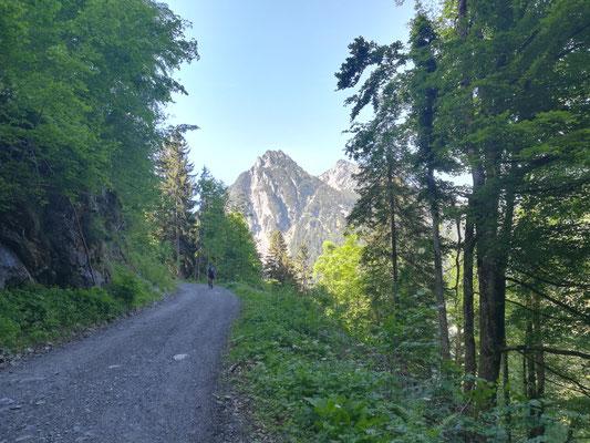 Nach dem Waldweg die ersten Blicke zu den umliegenden Bergen