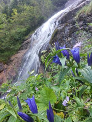 Schöner Wasserfall....