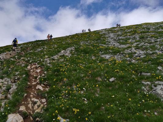 Im Gipfelbereich ist man nicht mehr alleine. Wir teilen uns den Gipfel mit etlichen, die mit der Bahn hoch kommen