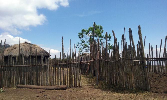Habitat massaï : boma