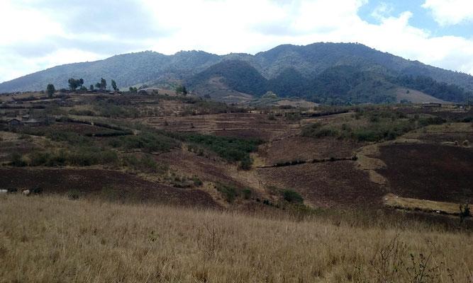 Les crêtes avec les villages et les champs massaïs