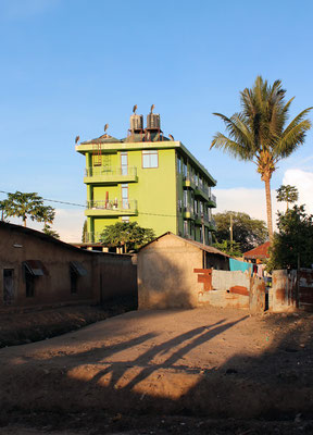 Musoma - l'hotel des marabous