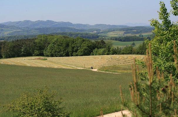 Blick vom Bötzberg nach Süden