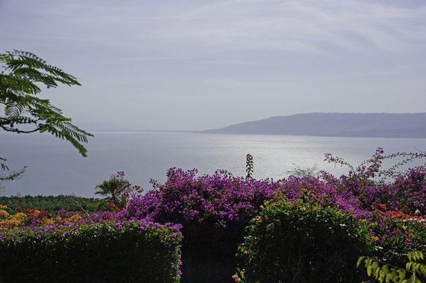 Blick vom Berg der Seligpreisungen über den See Genezareth