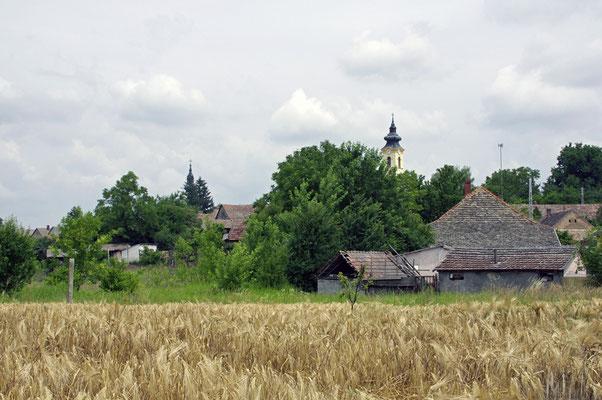 Dorf Hercegszántó