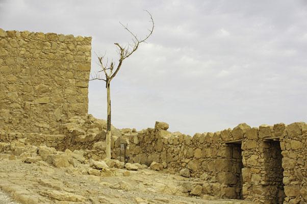 Masada, die Festung des Herodes