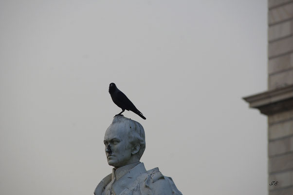 """Victoria-Memorial"""