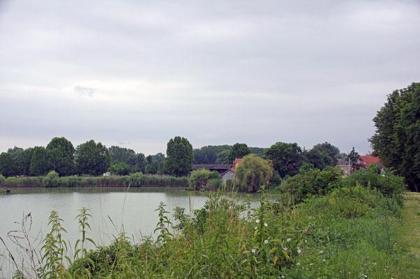 Donaublicke