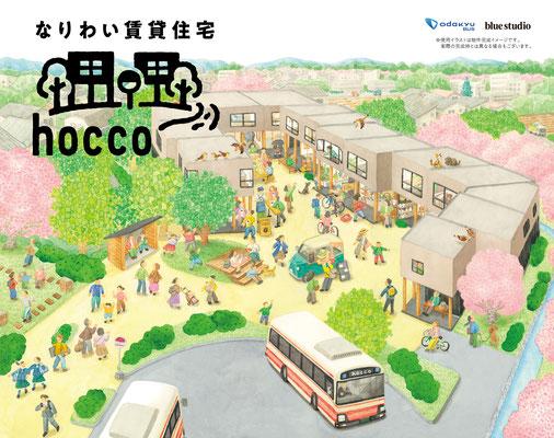 株式会社ブルースタジオ  |  hocco 募集広告イラスト |