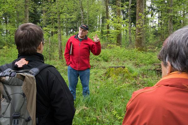 Exkursion mit dem Förster durch den ersten Mittelwald im Kanton Luzern