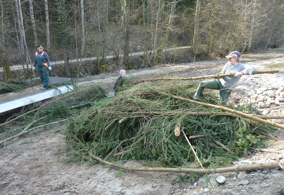 Künftig sollen mit grossen Asthaufen, neuen extensiven Säumen und Hecken im Bereich von Dauergrünland der Lebensraum auch im Smaragdgebiet verbessert werden... © Manfred Steffen