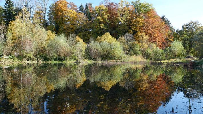 Die Naturperle Äschweiher bei St. Urban konnte nur gebaut werden, weil im 2004 noch keine Fruchtfolgeflächenkompensation verlangt wurde.