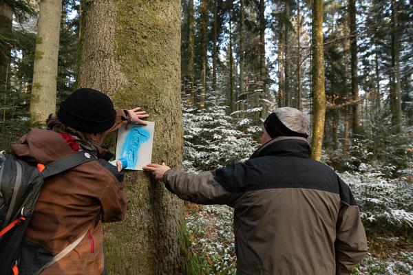 """... und markiert diese mit dem """"Blauen Specht"""", damit sie bei Forstarbeiten belassen werden können."""