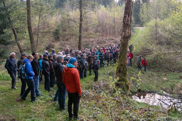 Exkursion in die Biberlandschaft Scharleteweiher mit dem Biberexperten Christof Angst © Jürg Stauffer