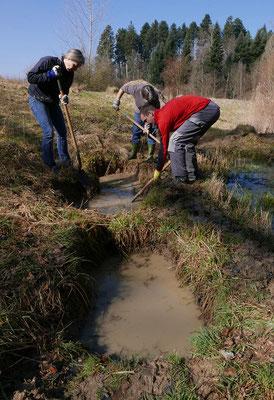 Mitglieder des VLR unterhalten regelmässig die Unkentümpel am Trübelbachweiher und auf dem Vereinsland im Steinibächlital. © Manfred Steffen