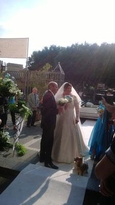 wedding-dog-sitter-catania