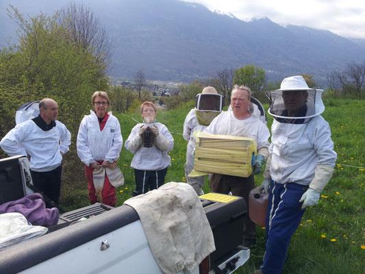 Avant l'ouverture des ruches