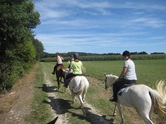 Horse-back riding tours Crins de la Boulise Mascaraàs-Haron (Vic-Bilh / Madiran)