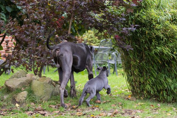 komm Papi, ich zeig dir unseren Garten