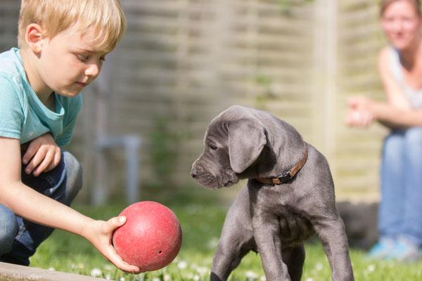 wollen wir mit dem Ball spielen?