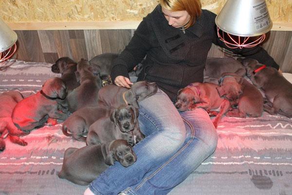 Frauchen kann sich noch nicht so richtig abnabeln..... :D es ist mitten in der nacht und mittlerweile sind alle Babys eingeschlafen!