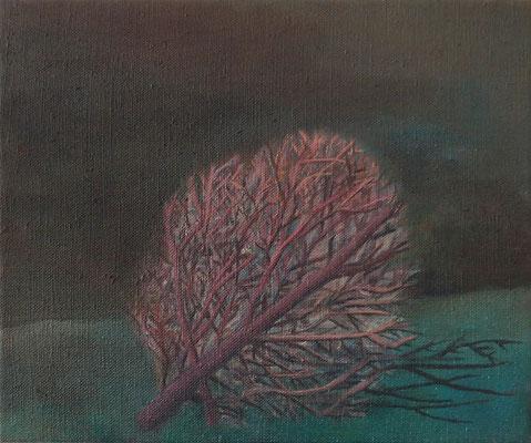Zweig 2012; 30 x 25 cm Öl auf Leinwand