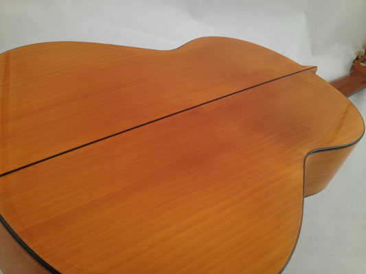 Francisco Barba 1999 - Guitar 1 - Photo 8