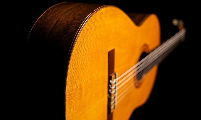 Santos Hernandez 1930 - Guitar 2 - Photo 11