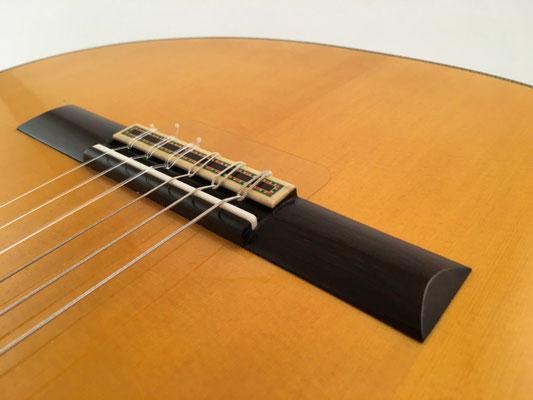 Francisco Barba 2016 - Guitar 2 - Photo 12
