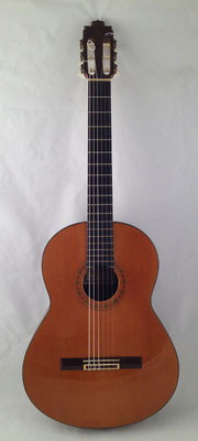 Francisco Barba 1995 - Guitar 1 - Photo 15