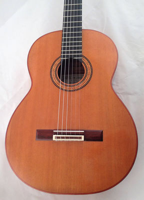 Gerundino Fernandez Hijo 2017 - Guitar 1 - Photo 1