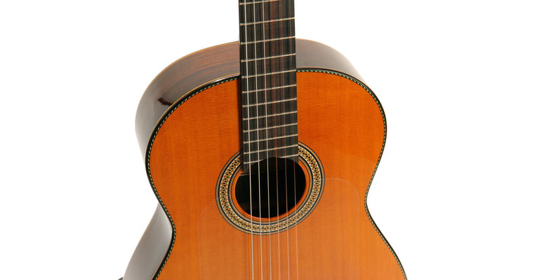Lester Devoe 2013 - Guitar 1 - Photo 8