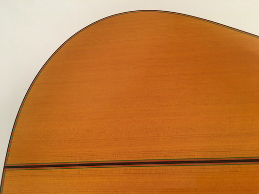 Francisco Barba 2016 - Guitar 1 - Photo 15