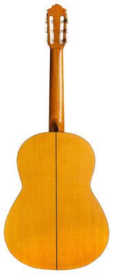 Marcelo Barbero Hijo 1962 - Guitar 1 - Photo 7