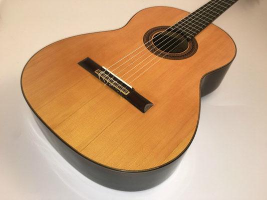 Santos Hernandez 1926 - Guitar 1 - Photo 12