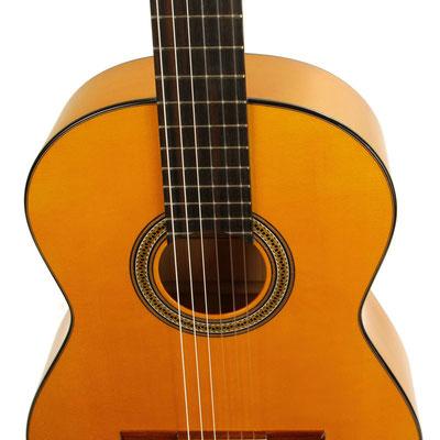 Lester Devoe 2018 - Guitar 1 - Photo 5