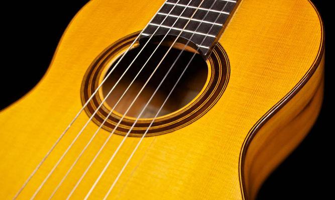 Antonio de Torres 1886 - Guitar 1 - Photo 10